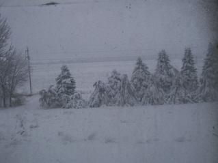 Snow_storm_002