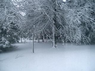 Snow_storm_007